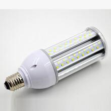 户外专用20W玉米灯,IP64防水玉米灯