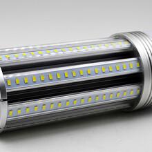 低压太阳能玉米灯,过CE认证玉米灯