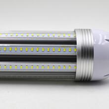 顶棚照明LED玉米灯
