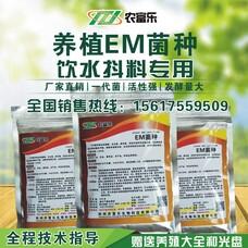 养殖em菌种,养殖em菌粉,养殖em益生菌