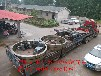 销轴式弹簧板结构分体烘干机大齿轮