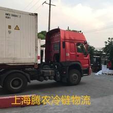 上海到青岛冷藏物流专业首选腾农冷藏运输公司