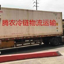 上海发青岛及周边冷链零担专线全国专线冷链物流腾农冷链