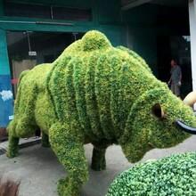 江南园艺订制仿真绿雕仿真动物造型