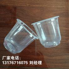 山东厂家定制早餐粥塑料杯/pp高温蒸煮杯图片