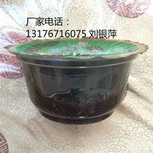 pp一次性塑料碗/透明火锅底料碗图片
