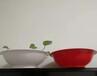 定制一次性pp扣肉碗方便面米粉塑料碗