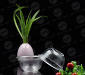 青岛一次性环保餐具供应商,欢迎您来电咨询寿百康一次性餐具