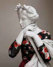 雕塑的新装图片