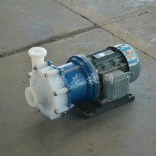 衬氟磁力泵耐腐蚀磁力泵厂家塑料磁力泵硫酸磁力泵价格CQB磁力泵硝酸磁力泵图片