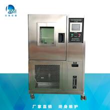 廠家供應恒溫恒濕箱蘭思LS-100H湖北武漢小型恒溫恒濕箱批發圖片