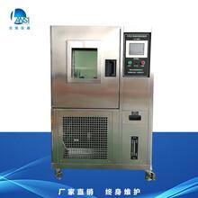 湖南高低溫恒溫恒濕箱LS-80H高低溫恒溫恒濕實驗箱廠家直銷圖片