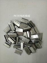平湖塑钢打包扣1608规格打包扣PET打包扣厂家图片