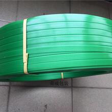 塑鋼打包帶新料不開裂發脆1608參數18公斤裝供應圖片