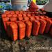江西销售聚乙烯浮体滚塑浮筒拦污浮筒警示浮标