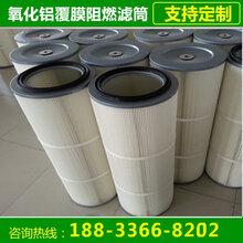 2134700唐纳森除尘滤芯生产厂家