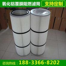 喷粉室粉末回收滤芯