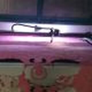 济南红太阳生产厂家销售供应全自动震动刀切割机皮革剪裁设备图片4
