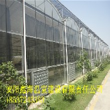 高新区怎样建一个樱桃大棚连栋玻璃温室建造价格