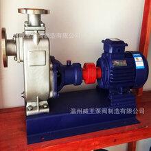 ZW型系列无堵塞自吸式排污泵图片