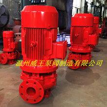 XBD立式离心泵单级单吸消防泵增压泵稳压泵消防喷淋泵图片