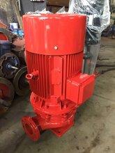 XBD-L立式單級單吸消防泵穩壓泵圖片