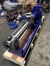 G25-1型不銹鋼螺桿泵濃漿泵衛生級螺桿泵單螺桿泵圖片