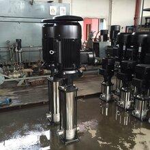 不锈钢管道离心泵CDLF8-40防爆不锈钢管道泵图片
