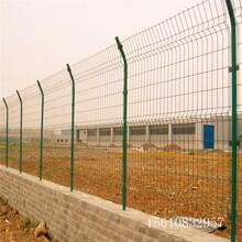 工厂隔离网,包塑铁丝网围栏,迅鹰护栏网厂家供应图片