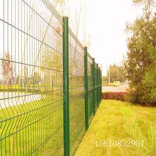 幼儿园围栏网/包塑金属防护网/迅鹰护栏网厂家图片
