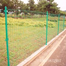 人行道防护网,双边护栏网,喷塑防锈金属网,迅鹰隔离网厂图片