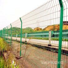 迅鹰绿色框架防护网A赣州圈地1.8高围网围栏现货图片
