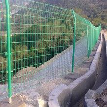 迅鹰供应现货公园绿色围网A盐城景区1.8高墙体围栏现货