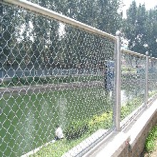 菱形围栏网A2米菱形围栏网现货A绵阳菱形围栏网A迅鹰菱形围栏规格?图片