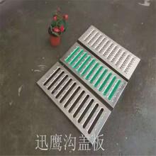 迅鹰星级厨房沟盖板A201厨房防堵水篦子A怀化厨房排水盖板效果图图片