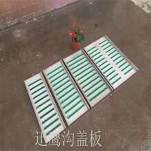 迅鹰不锈钢201防滑板A医院走道防滑板盖板A郑州厨房排水篦子型号图片