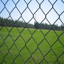 球场围网A咸阳市球场围网安装A高尔夫球场围网图片图片