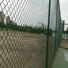 球场围网A衡阳市学校球场围网A棒球球场围网安装图片