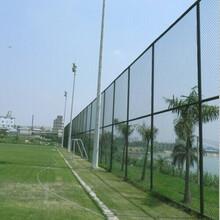球场围网Apvc球场围网生产A菏泽市迅鹰球场围网厂图片