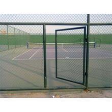 球场围网A郴州市球场围网经销商A3米高球场围网图片