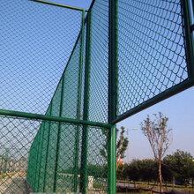 校园体育场操场围网A宝鸡墨绿色跑道围网A迅鹰运动场安全隔离网图片