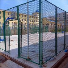 球场围网A校园蓝球场围网生产施工A本溪球场围网施工队图片