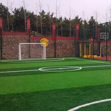 松江网球场围网生产厂图片