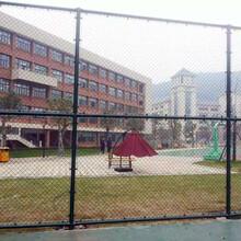 忻州绿色球场围网定制生产厂家图片