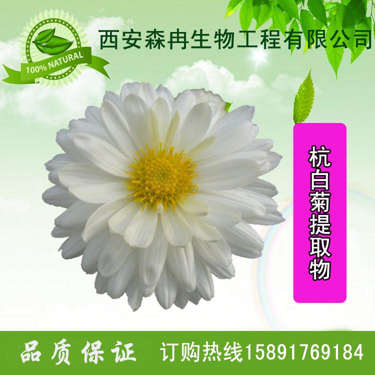 小白菊提取物/杭白菊提取物/胎菊提取物杭白菊总黄酮