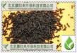 沧州空气净化用柱状活性炭价格