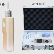 氢气检测仪高精度氢气检测仪