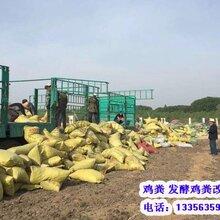 河北鸡粪,北京稻壳鸡粪,山东鸡粪,山西干鸡粪肥田沃土图片