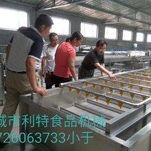 连续式果蔬清洗机食堂蔬菜清洗机蔬菜清洗设备图片