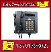 KTH101防爆電話